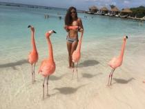 Aruba 6 Dias 5 Noches Salida 29 de Octubre con Avianca