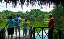 Fiestas Patrias 2019 en Tarapoto con Puerto Palmeras