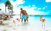 Año Nuevo 2020 en Aruba 6 Dias 5 Noches