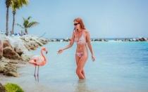 Fiestas Patrias en Aruba del 24 al 28 de Julio 2020