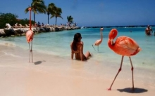 Renaissance Aruba Private Island 4 Dias 3 Noches