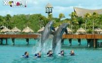 Cancun Todo Incluido con Plan Xcaret Plus