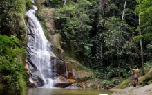 PUMARINRI AMAZON LODGE TARAPOTO 4DIAS 3NOCHES