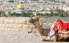 Semana Santa 2020 en Egipto Jordania e Israel