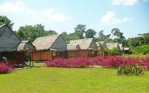 Fiestas Patrias 2020 en la Ciudad y Selva de Iquitos