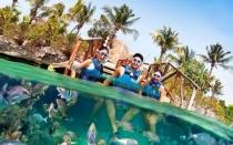 Cancun Full Day Parque Xcaret Todo Incluido