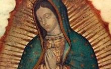 PEREGRINACIóN MéXICO Y VIRGEN DE GUADALUPE